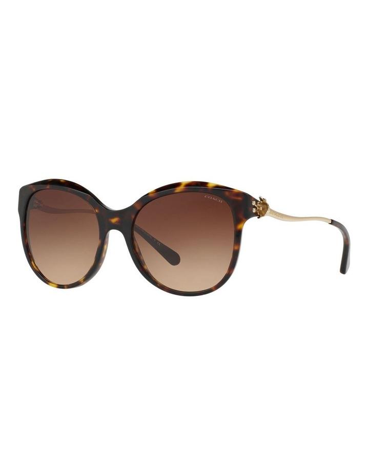 HC8189F 401620 Sunglasses image 2