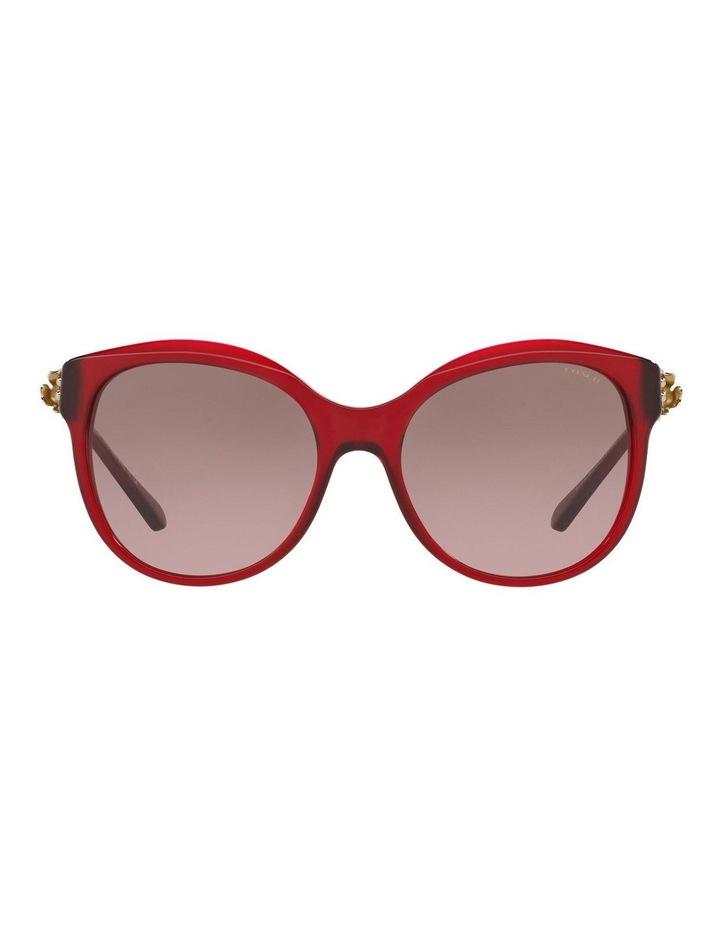 HC8189F 401621 Sunglasses image 1