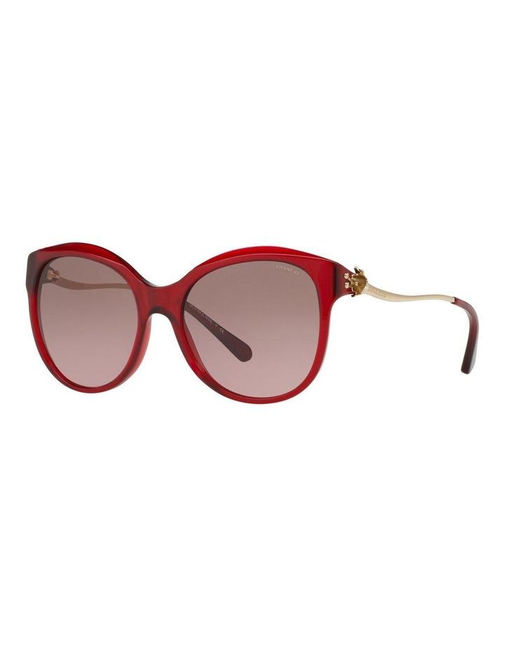 HC8189F 401621 Sunglasses image 2