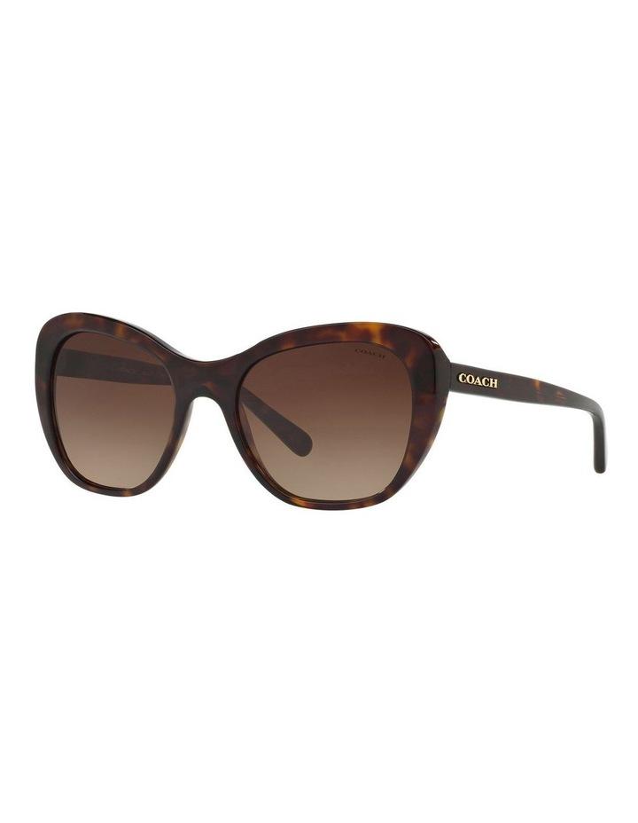 HC8204F 404113 Sunglasses image 2