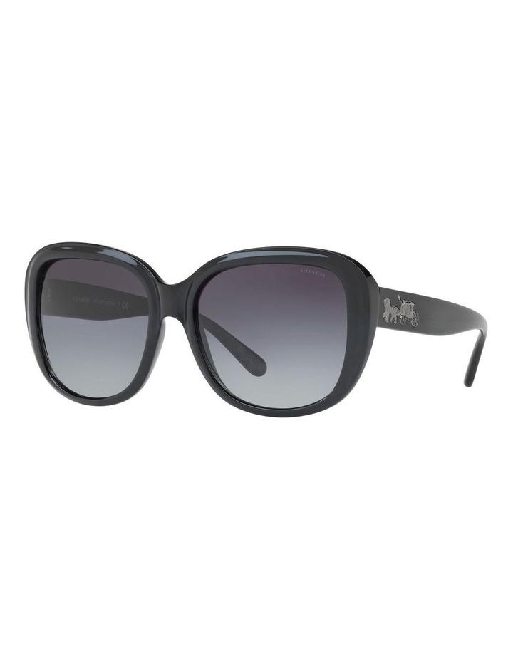 HC8207F 404116 Sunglasses image 2
