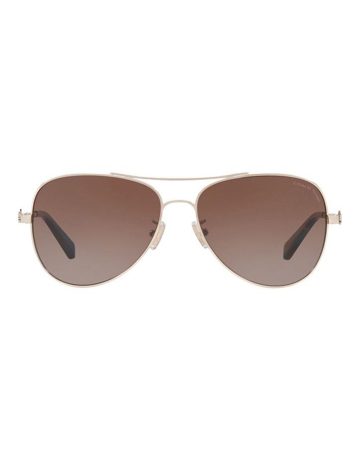 HC7074 407455 Polarised Sunglasses image 1