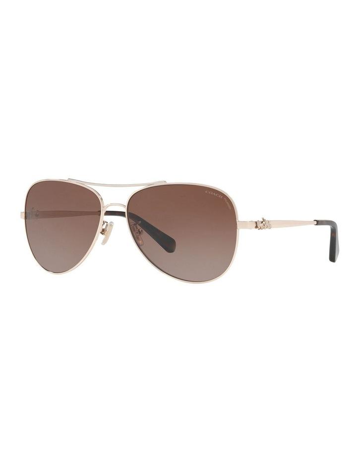 HC7074 407455 Polarised Sunglasses image 2