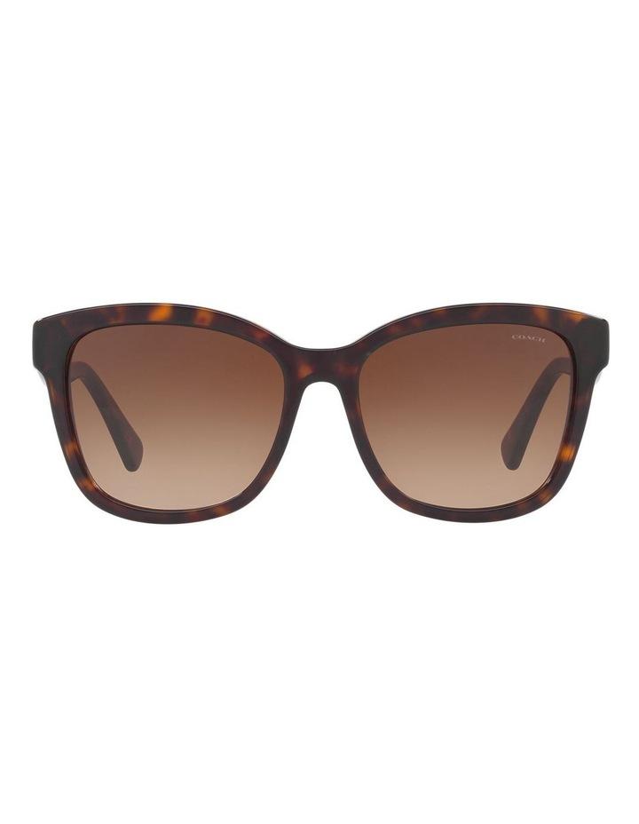 HC8219 407461 Sunglasses image 1