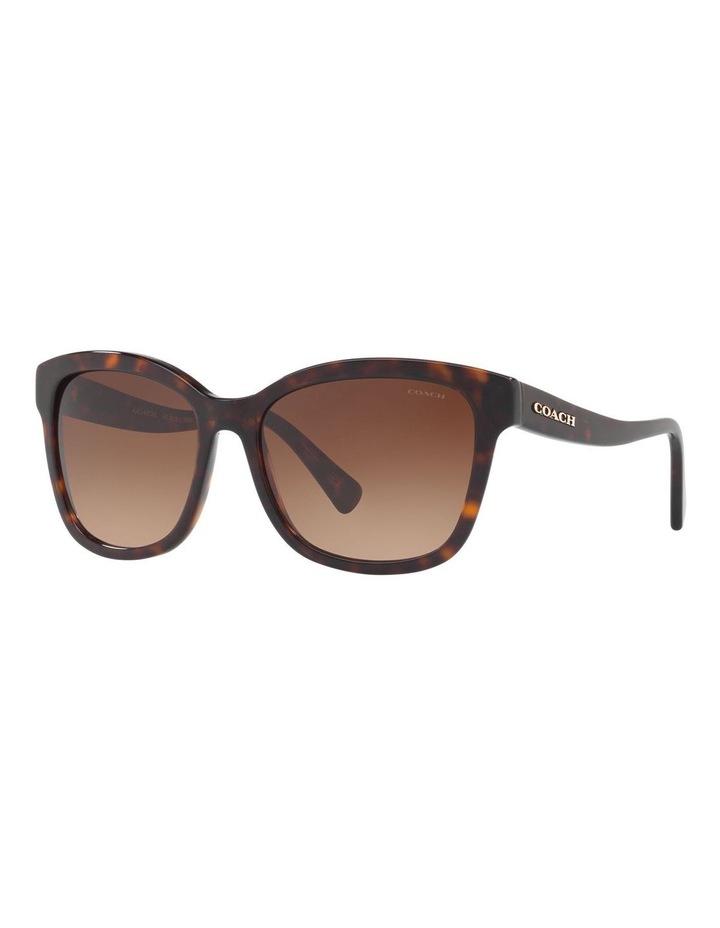 HC8219 407461 Sunglasses image 2
