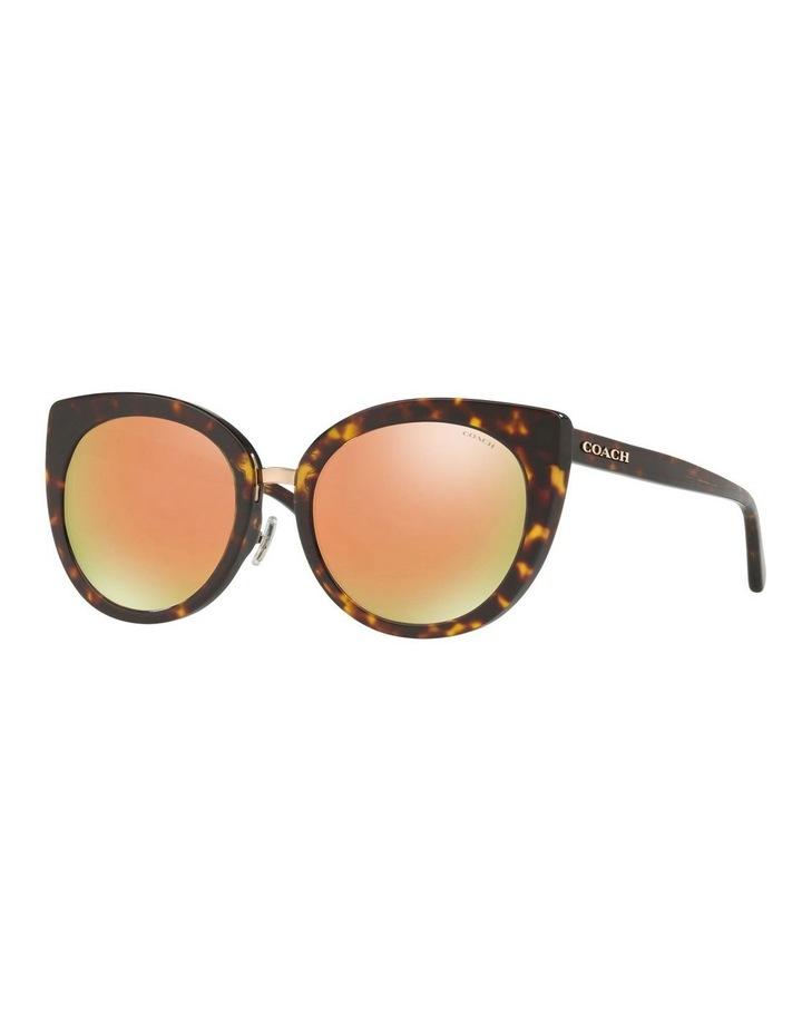 HC8225D 407463 Sunglasses image 2