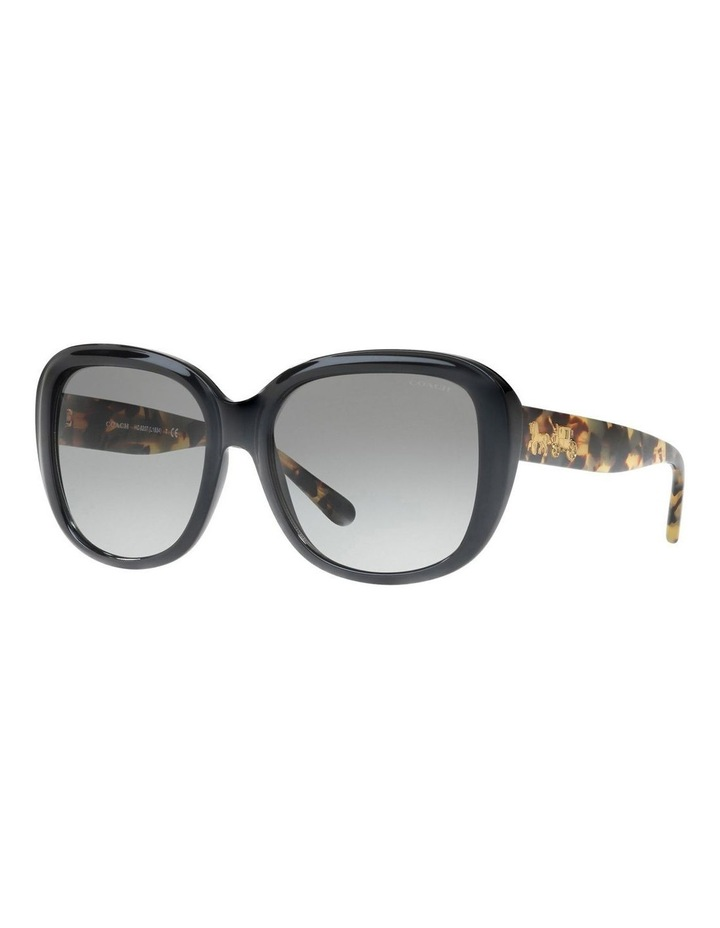 HC8207F 407488 Sunglasses image 2