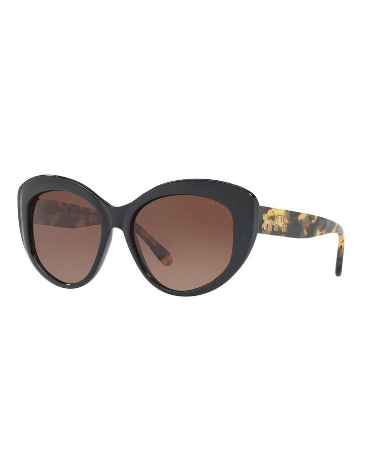 HC8206F 407489 Sunglasses image 2