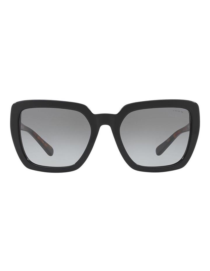 HC8217F 407490 Sunglasses image 1