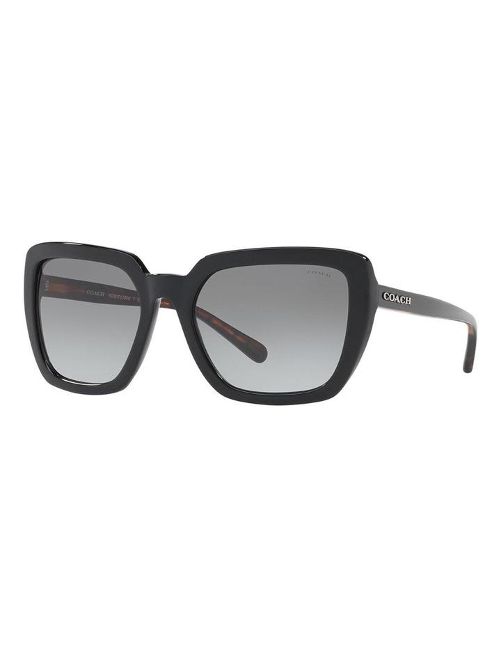 HC8217F 407490 Sunglasses image 2