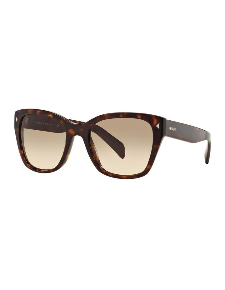 Tortoise Square Sunglasses PR 09SSF 387691 image 1