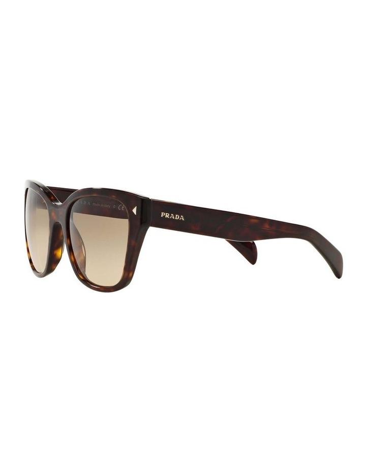 Tortoise Square Sunglasses PR 09SSF 387691 image 3
