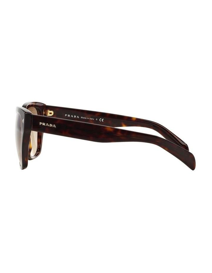 Tortoise Square Sunglasses PR 09SSF 387691 image 4