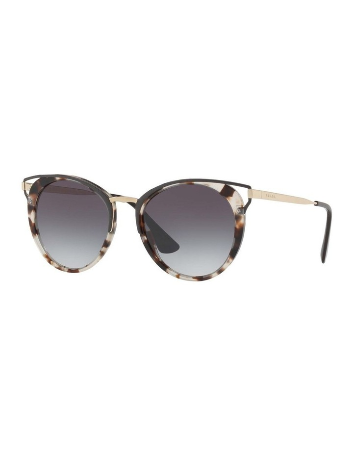 Tortoise Round Sunglasses PR 66TS 409643 image 1