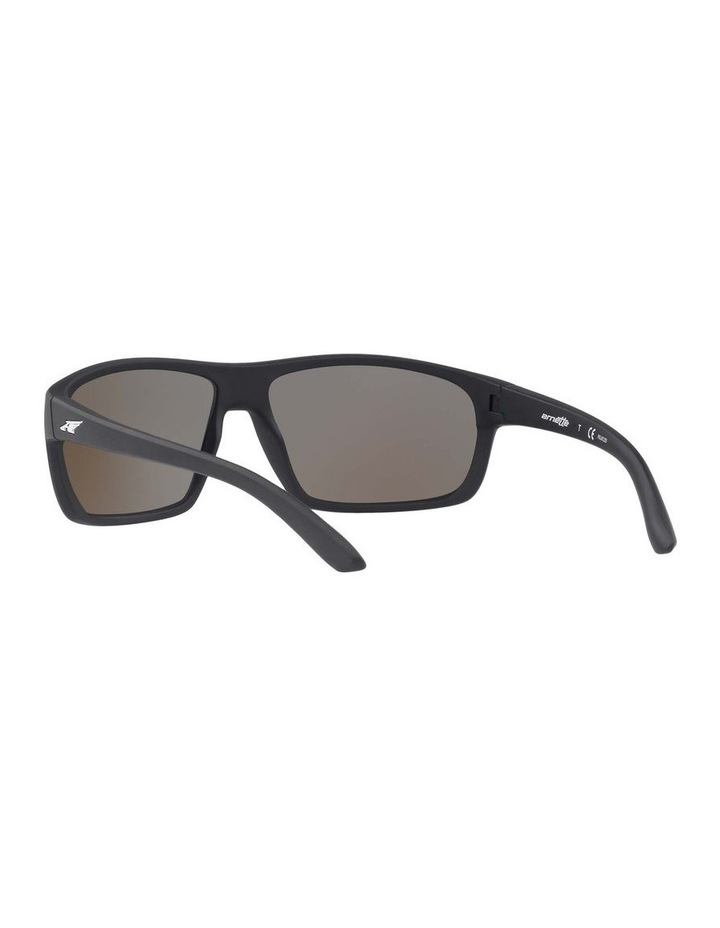 AN4225 409608 Polarised Sunglasses image 6