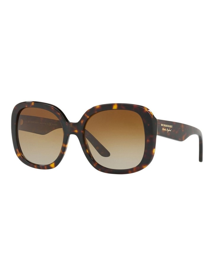 BE4259 412221 Polarised Sunglasses image 2