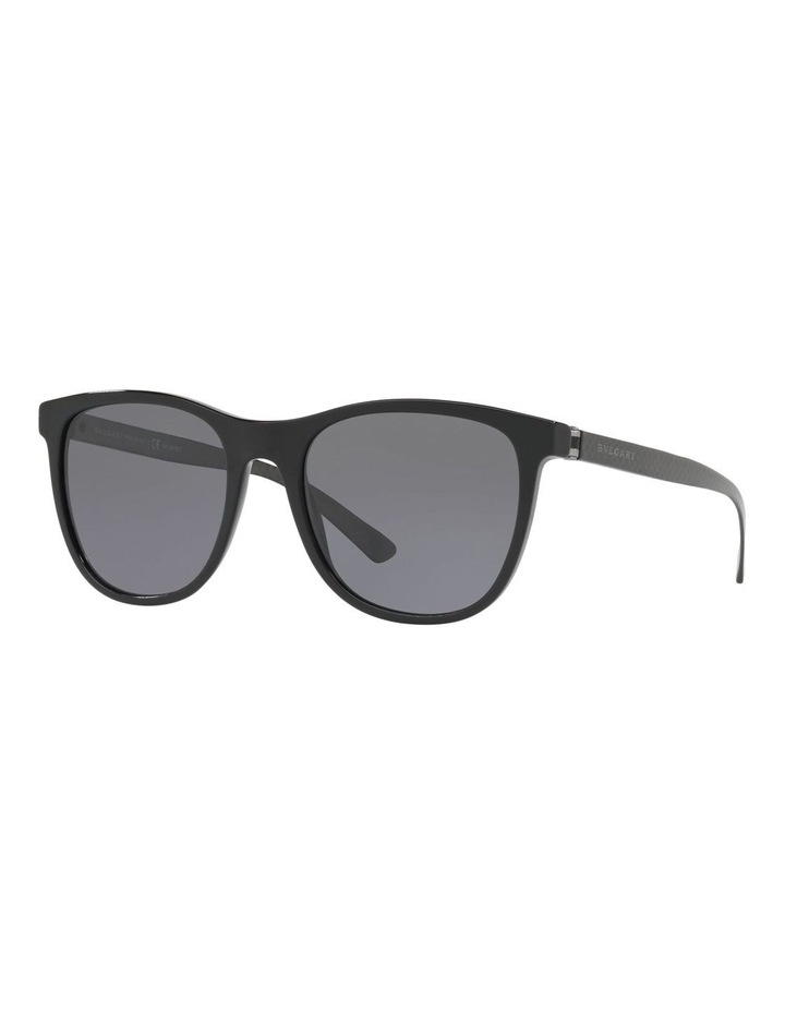 BV7031 412241 Polarised Sunglasses image 2