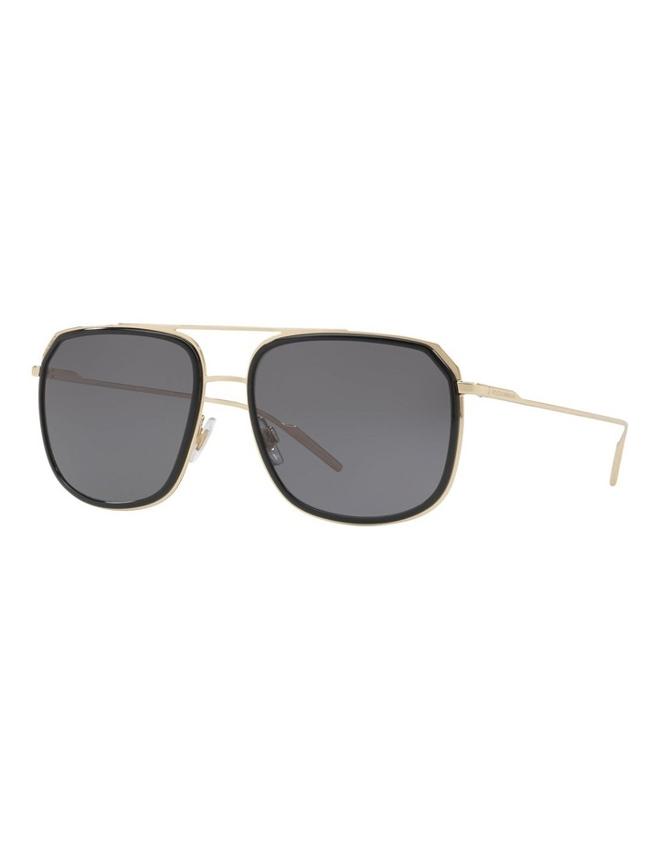 DG2165 412304 Polarised Sunglasses image 3