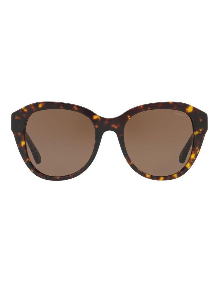 HC8231 412631 Sunglasses image 1
