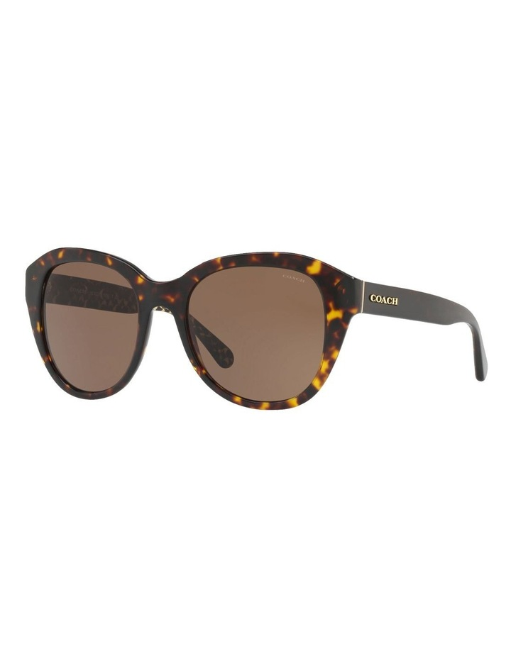 HC8231 412631 Sunglasses image 2