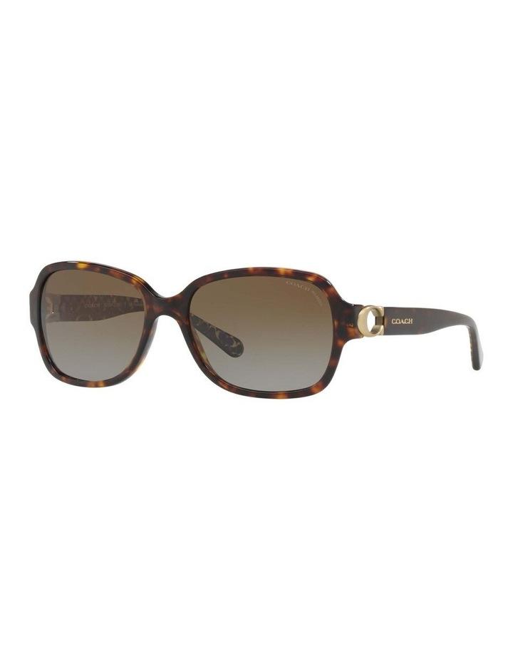 Polarised Tortoise Rectangle Sunglasses HC8241 434369 image 1