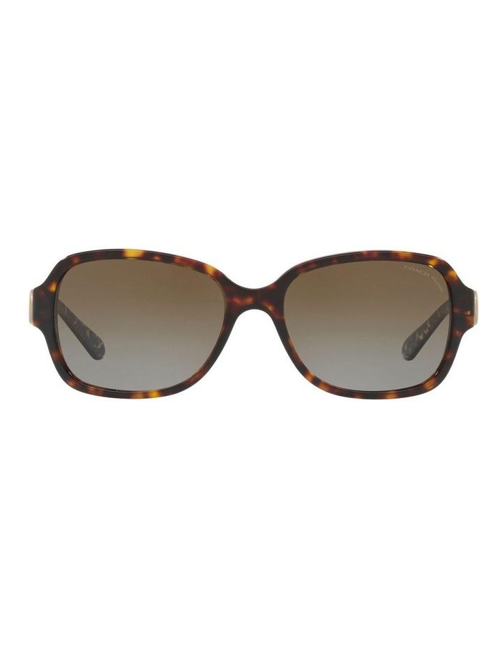 HC8241 434369 Polarised Sunglasses image 1