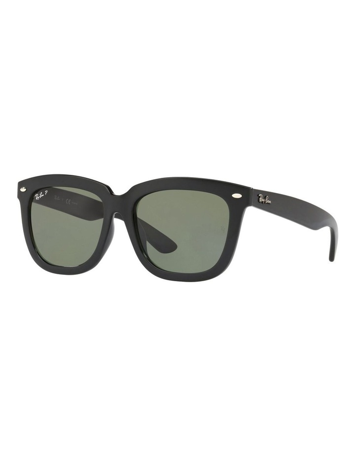 RB4262D 423496 Polarised Sunglasses image 2
