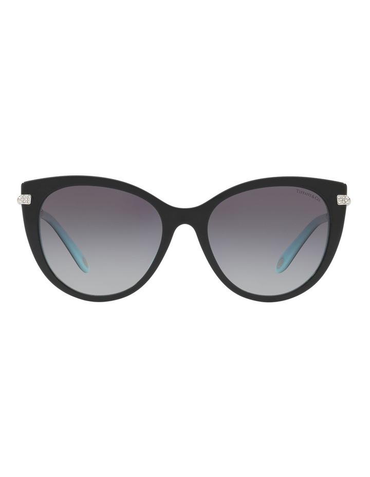 TF4143B 411953 Sunglasses image 1