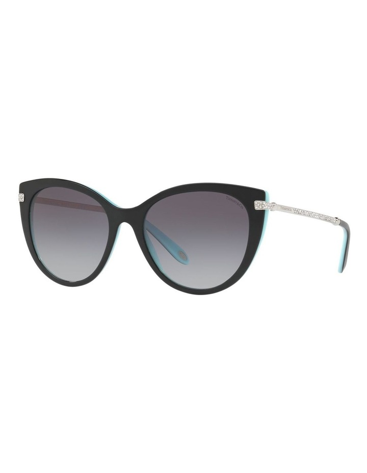 TF4143B 411953 Sunglasses image 4