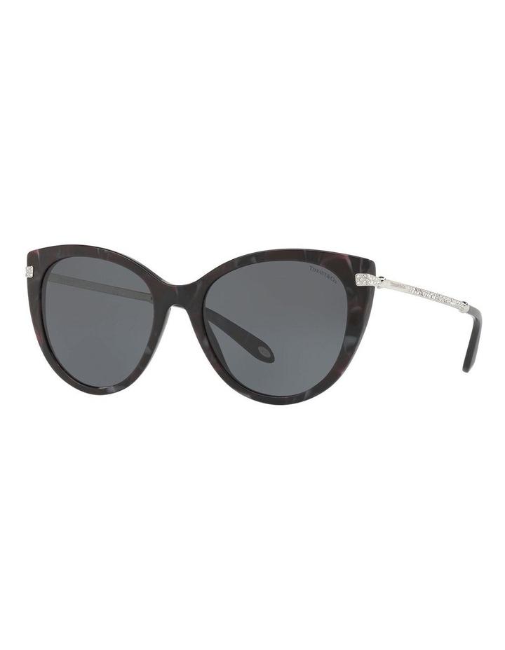 TF4143B 412615 Sunglasses image 4