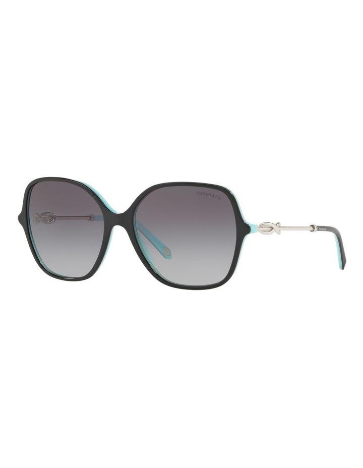TF4145BF 433383 Sunglasses image 4
