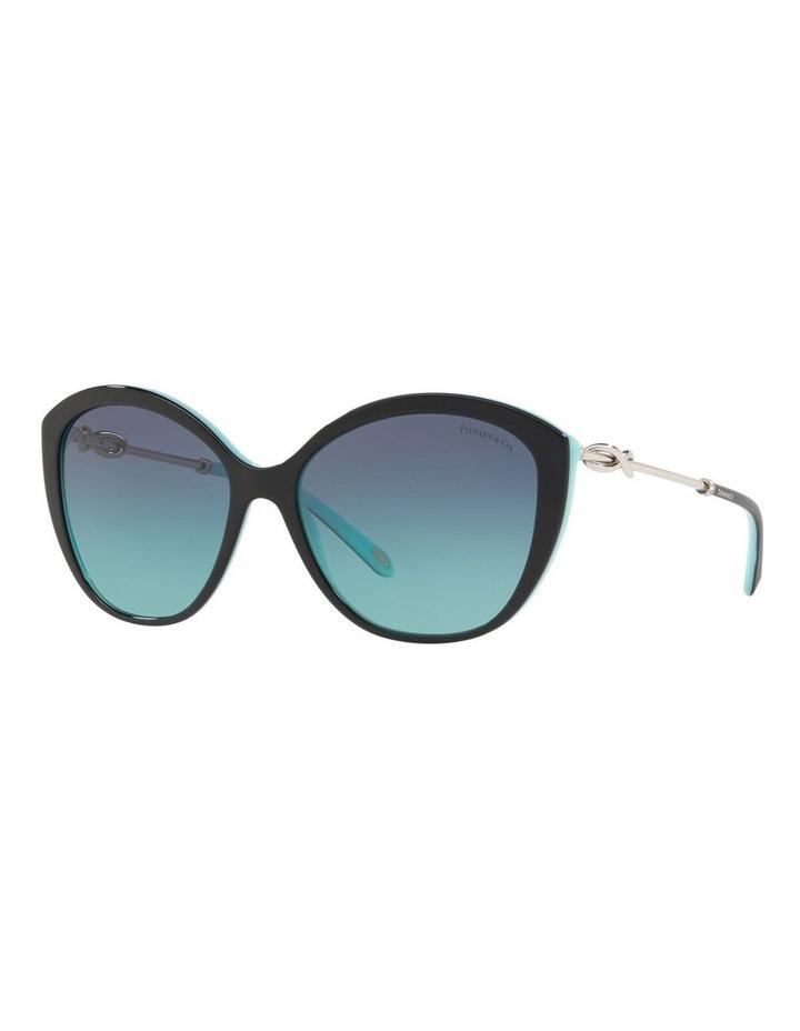 TF4144B 434408 Sunglasses image 4