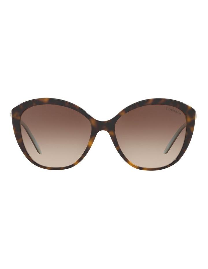 TF4144B 434409 Sunglasses image 1
