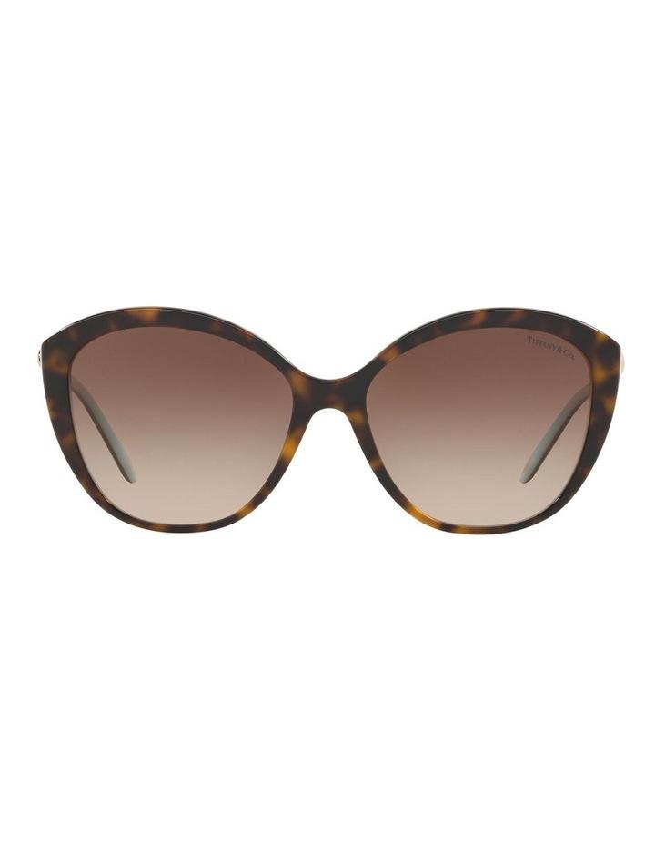TF4144B 434409 Sunglasses image 2