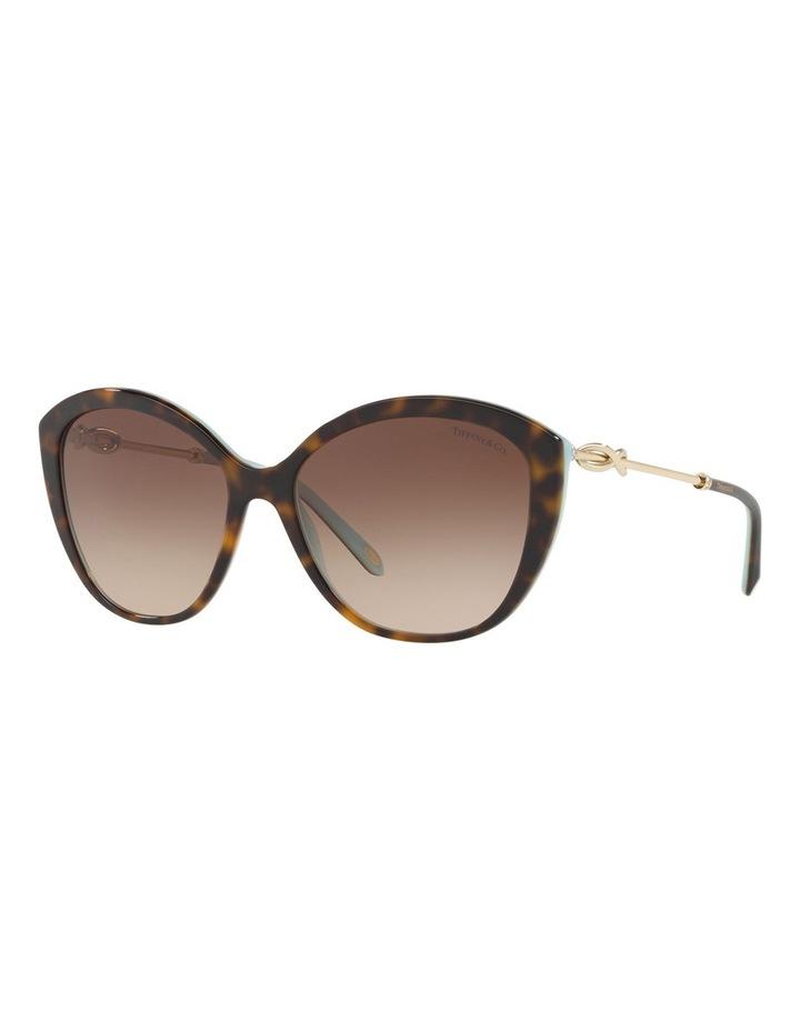 TF4144B 434409 Sunglasses image 3