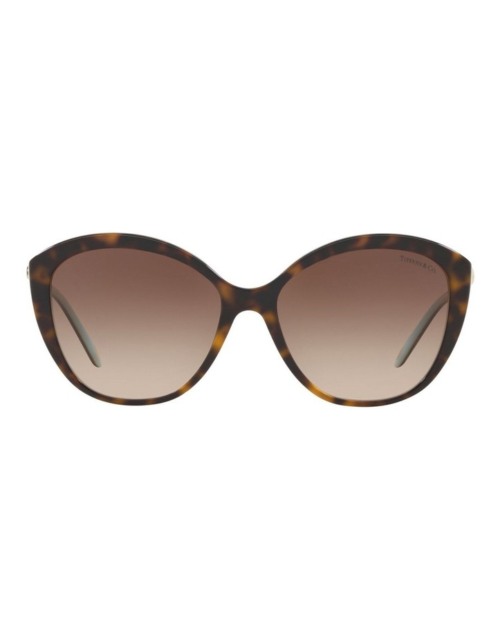 TF4144BF 434410 Sunglasses image 2
