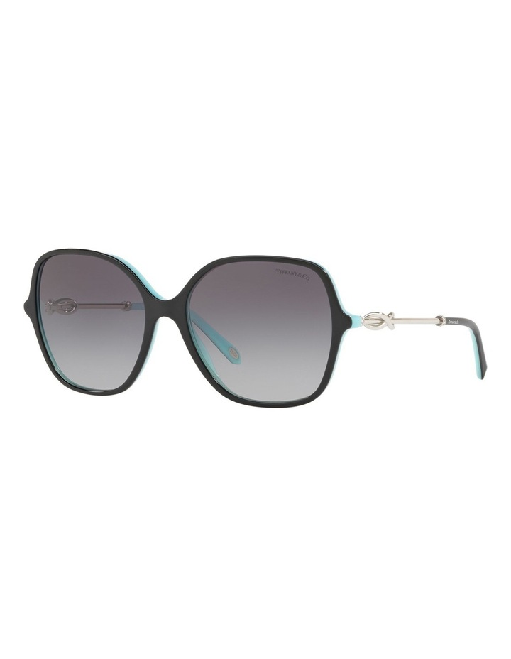TF4145B 434422 Sunglasses image 3