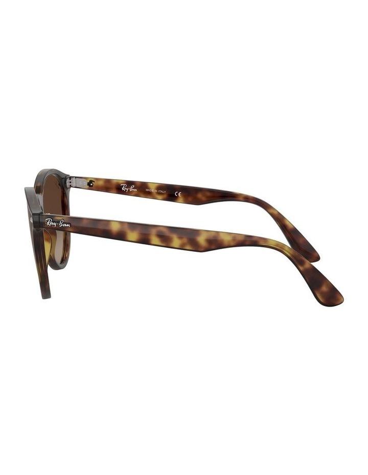 Blaze Panthos Brown Keyhole Bridge Sunglasses 0RB4380N 1519241004 image 4