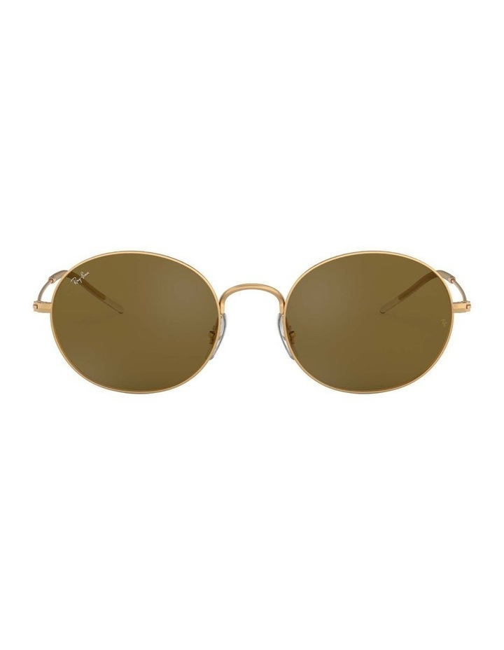 Brown Oval Sunglasses 0RB3594 1519284004 image 2