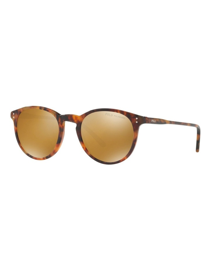 PH4110 412639 Polarised Sunglasses image 3