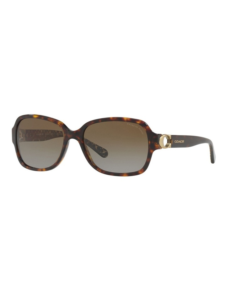 HC8241F 434152 Polarised Sunglasses image 3