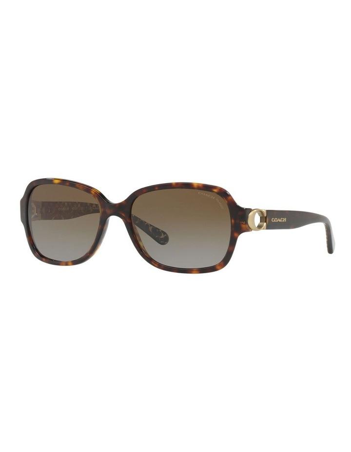 HC8241F 434152 Polarised Sunglasses image 4