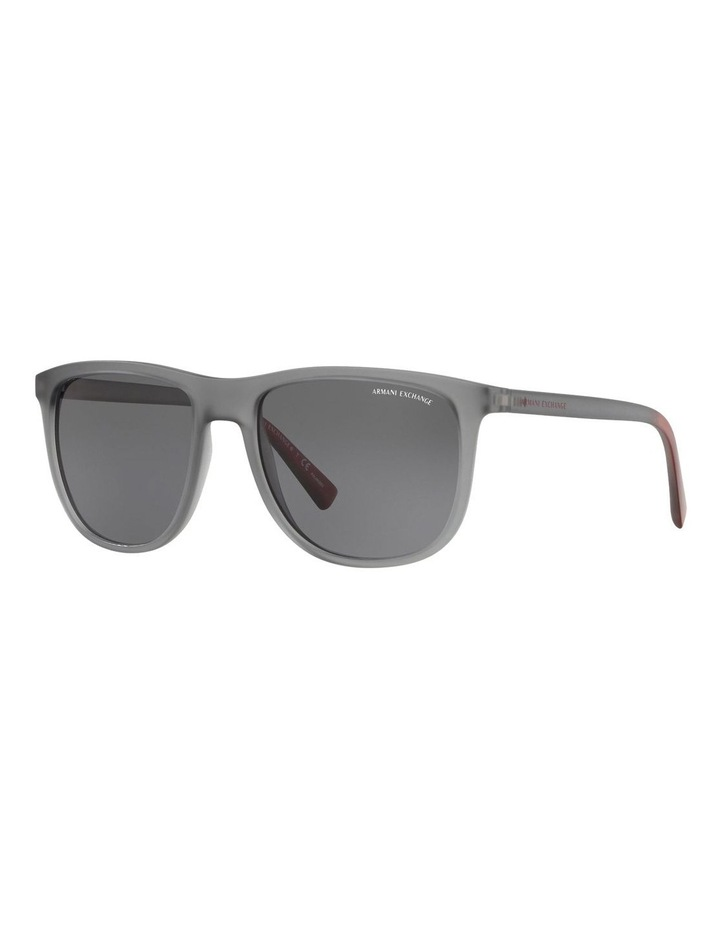 AX4078SF 436801 Polarised Sunglasses image 2