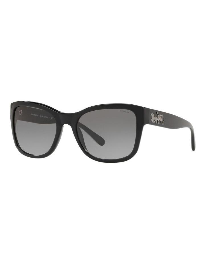 HC8243F 437534 Sunglasses image 2