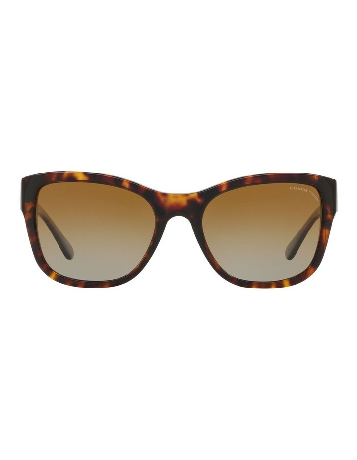 HC8243F 437535 Polarised Sunglasses image 1