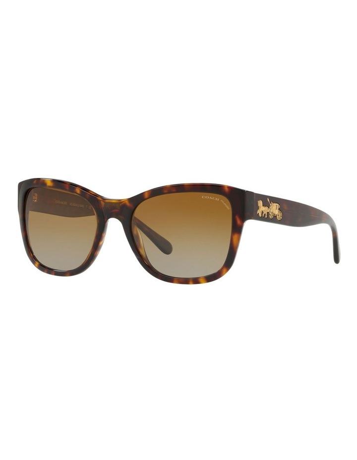HC8243F 437535 Polarised Sunglasses image 2