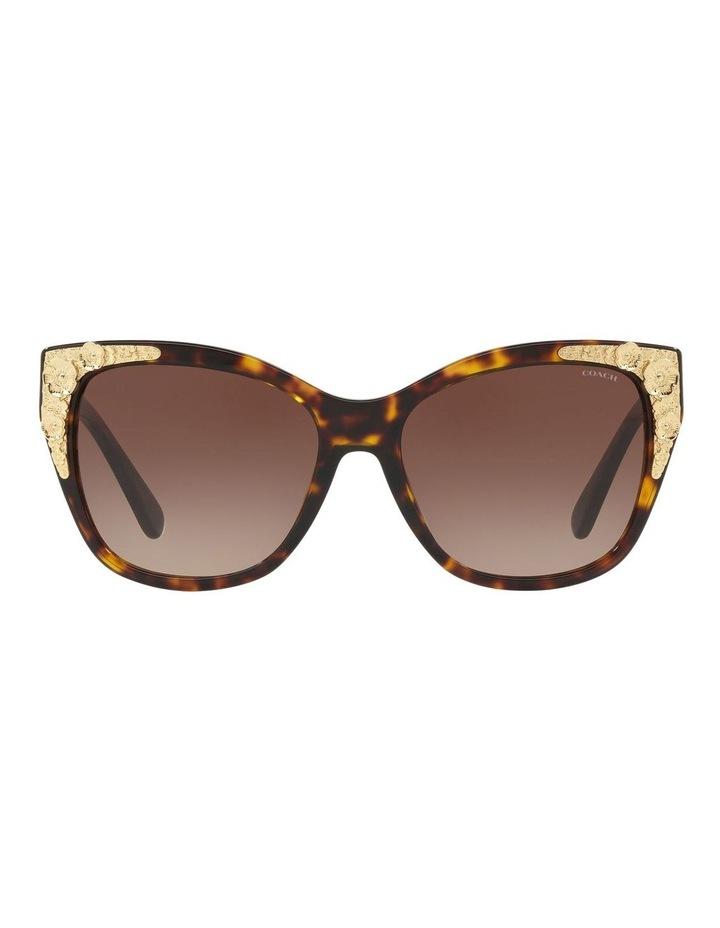 HC8244F 437536 Sunglasses image 1