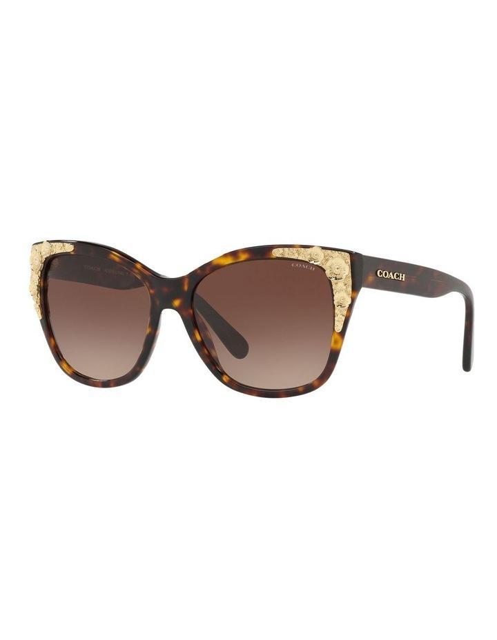 HC8244F 437536 Sunglasses image 2