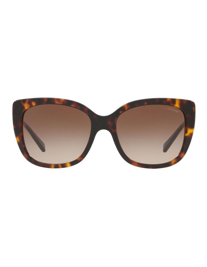 HC8246F 436571 Sunglasses image 1