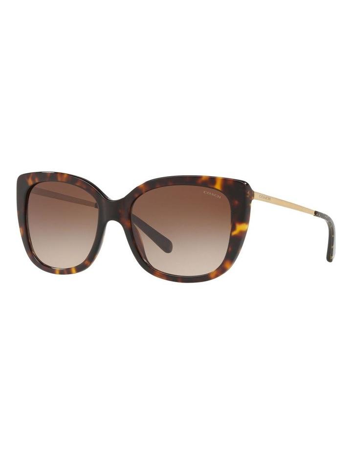 HC8246F 436571 Sunglasses image 2